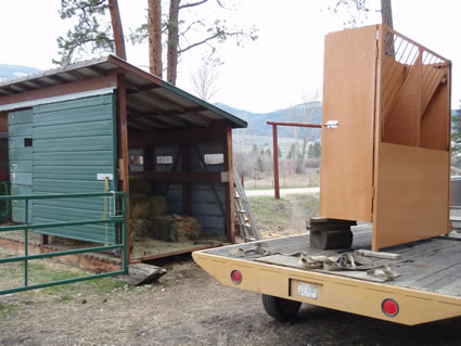 Hay Shed Wall Automatic Horse Feeder